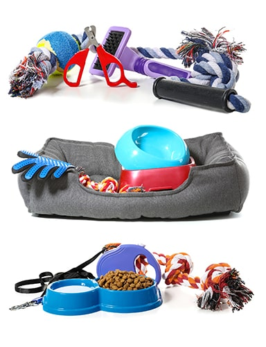 Dog Accessories for Camping
